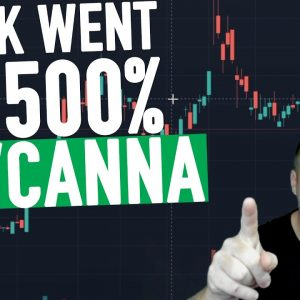 This Stock Went up 500% In 2020... BEVCANNA