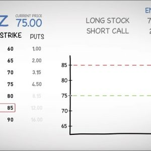 USE STOCKS TO GENERATE INCOME - COVERED CALL | Sky View Trading